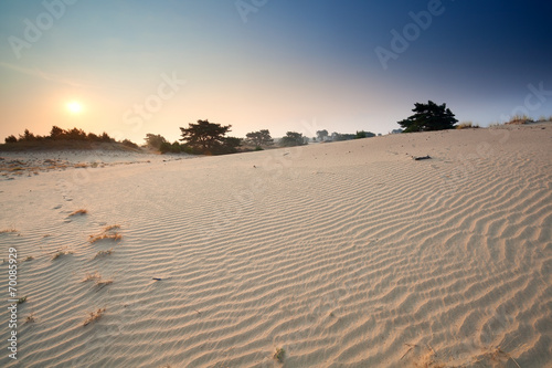 canvas print picture sunrise over sand dunes