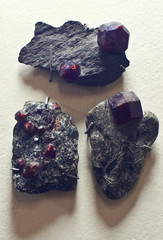 crystals of Almandine (Garnet) in host rock