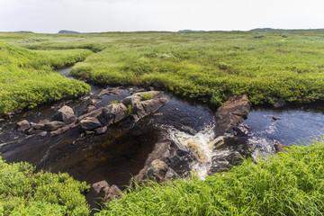 flowing stream in green meadow; L'Anse aux Meadows, Newfoundland