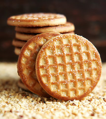 Stack of sugar cookies on chopped nuts