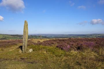 moorland standing stone