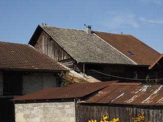 Detalle de Boringes (Francia)