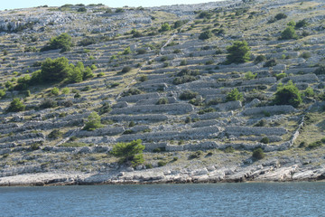 Dry stone walls on Kornati islands (Croatian National Park)