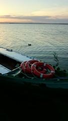 Barca con salvavidas y pato