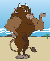 Body Building Buffalo
