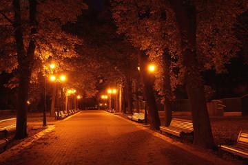 Night in Mariinsky park