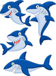 Cartoon shark collection set - 70108701