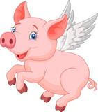 Fototapety Cute pig cartoon flying