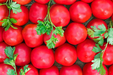 Ripe tomatoes of bright red color of the small size.