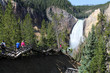 Leinwandbild Motiv Yellowstone - Grand Canyon / Lower Falls