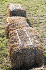 Hay stacks on green grass with selective focus