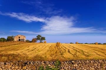 Paesaggio rurale:balle di fieno.-ITALIA(Puglia)-