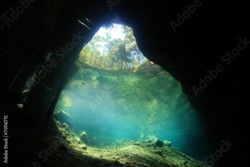Fotobehang Koraalriffen Entrance of cenote underwater cave