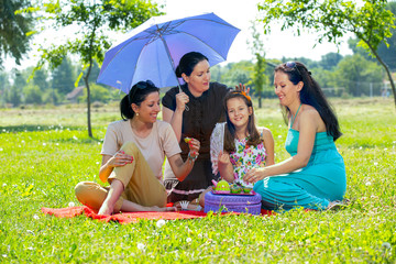 Picnic fun. Four girls having fun at a picnic.