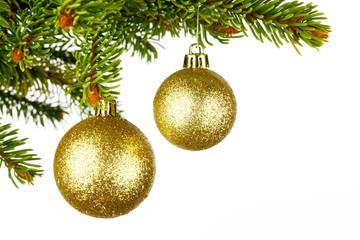 Christmas tree branch with ball
