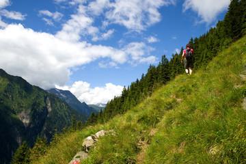 Wanderer im Zillertal - Alpen
