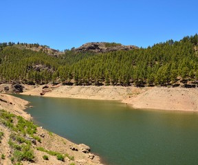 Freshwater reservoir among pines, Gran canaria island