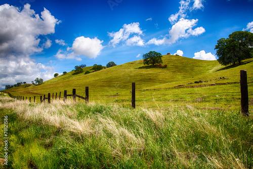 Rolling Green Hills - 70121586
