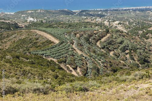 canvas print picture Landschaft bei Rethymnon, Kreta
