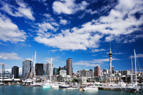 Tuinposter Oceanië Auckland, North Island, New Zealand skyline