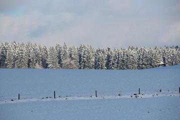 Winterlandschaft mit Feldern und Wald