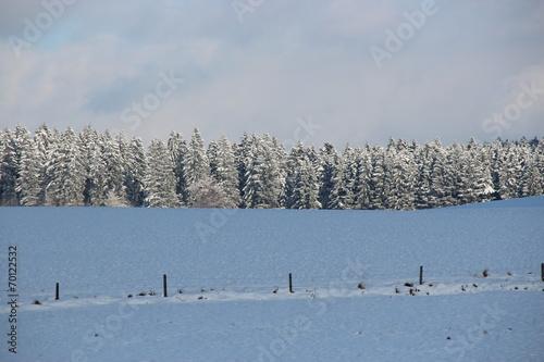 canvas print picture Winterlandschaft mit Feldern und Wald