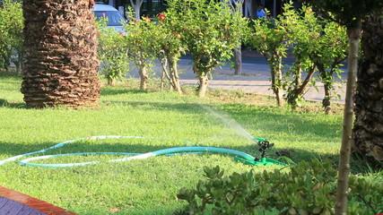 Sprinklers showering lawn