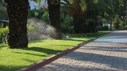 Grass Sprinkler watering