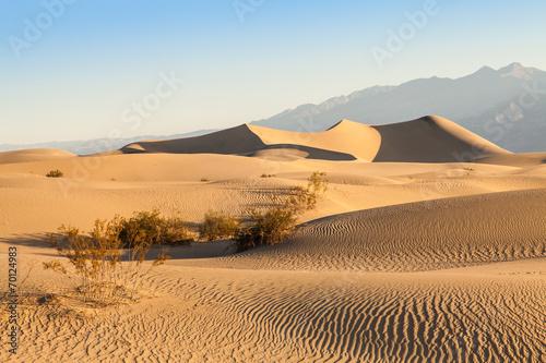 Naklejka Death Valley Desert