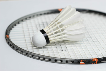 Badminton new shuttelcock