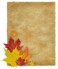 Autumn_Letter