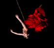 Leinwanddruck Bild - Woman gymnast in red dress on rope on black background