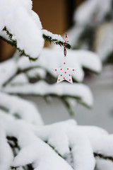 Christmas decorations on the branch with snow