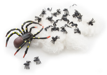 Black rubber spiders