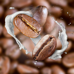 Falling roasted coffee beans with steam and milk