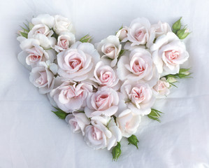 White roses flowers heart shape on white cloth background.