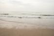 seashore in the north sea