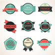 Labels design vintage style set. vector illustration.