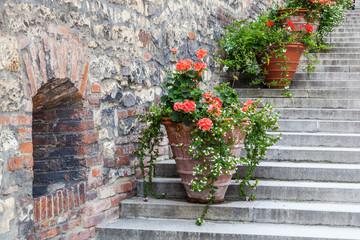 Blumentöpfe an einer alten Steinmauer