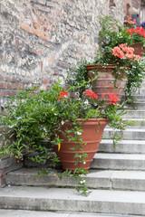 Blumentöpfe auf einer Treppe