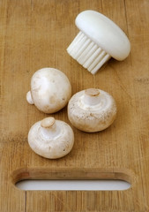 White mushrooms with brush