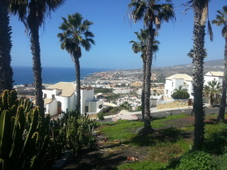 Tenerife south view