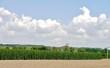 canvas print picture - Ernte in der Landwirtschaft