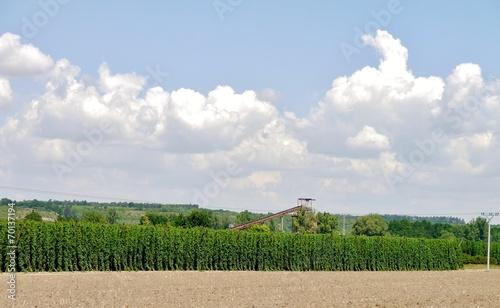 canvas print picture Ernte in der Landwirtschaft