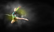 canvas print picture - Gymnast girl
