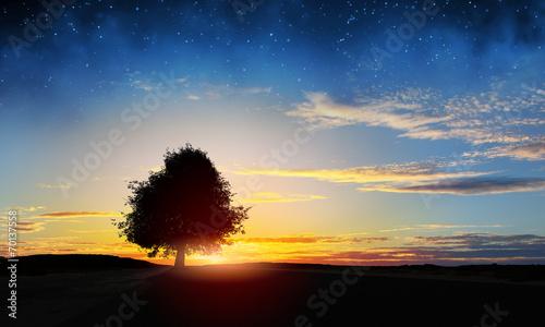 canvas print picture Natural landscape