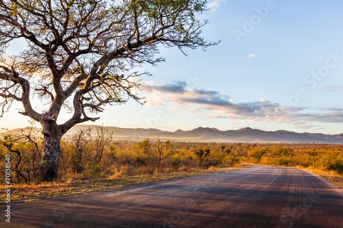 Aluminium Zuid Afrika African Landscape