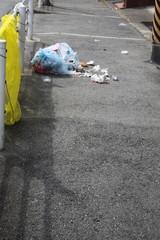 破れたゴミ袋