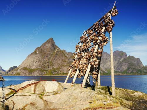 Aluminium Scenery in Lofoten, Norway