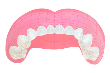 Teeth of the upper jaw. Vector illustration with visible mesh.